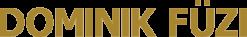 DOMINIK FÜZI – TOP-SPEAKER, DOZENT & UNTERNEHMER Logo
